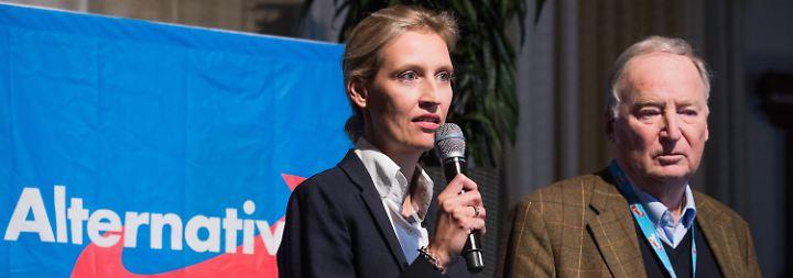 Petry scheitert doppelt: AfD zieht mit ungleichem Duo in den Wahlkampf