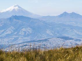 Der Cotopaxi überragt Ecuadors Hauptstadt Quito - und bedroht die Bewohner ständig mit einem Ausbruch.