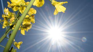 Versöhnliches Monatsende: April endet mit viel Sonnenschein