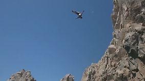 Sturz in die Tiefe ist nicht genug: Klippenspringer suchen den doppelten Adrenalinkick