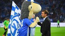 Nach nur einem Jahr ist die Zeit für Trainer Markus Weinzierl auf Schalke wieder beendet.