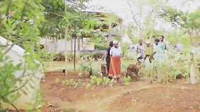"""Gemüseanbau mit wenig Wasser: """"Sauti Kuu""""-Center leistet in Kenia Hilfe zur Selbsthilfe"""