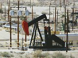 Überangebot wächst weiter: Opec bekommt Ölpreis nicht in den Griff