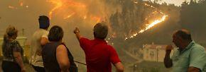 """Tödliche Waldbrände: Portugal erlebt """"Feuerhölle"""""""