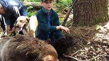Mehrere Schüsse nötig: Elfjähriger rettet Angler vor Bärenangriff