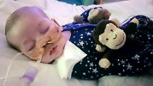 Gezerre um todkrankes Baby: Vatikanische Klinik will Charlie aufnehmen