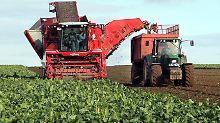 Biosprit-Tochter treibt an: Höhere Preise erfreuen Südzucker
