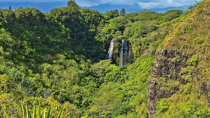 Reisen in die Tropen bringen außer spannenden Eindrücken leider auch manchmal Tropenkrankheiten mit sich.