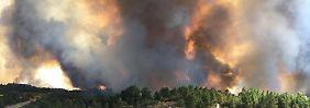 47 Grad und heftige Winde: Waldbrände fressen sich durch Süden Europas