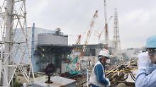 Bilder von lavaartigem Brocken: Roboter findet wohl Fukushima-Brennstoff
