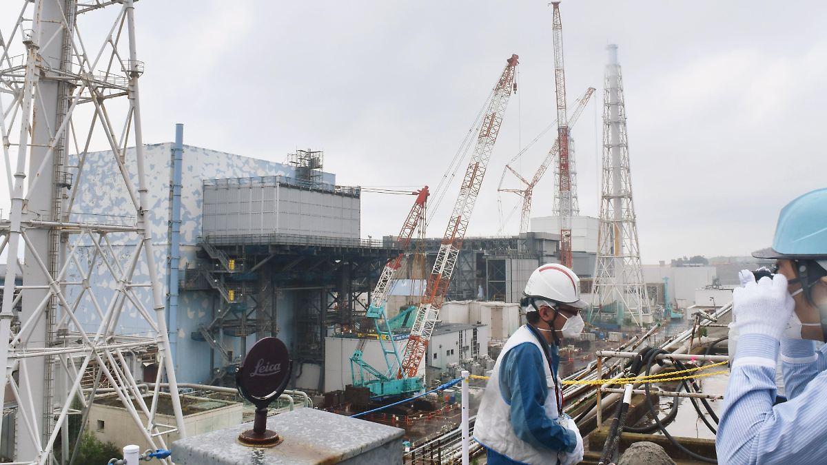 Roboter findet wohl Fukushima-Brennstoff