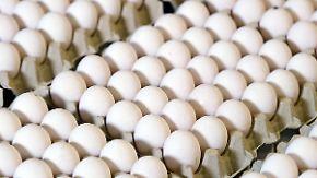 Das war der Morgen bei n-tv: Fipronil-Skandal: Aldi verkauft keine Eier mehr