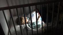 """Angriff der """"Supermamis"""": Schadet Sarah Lombardi ihrem Kind?"""