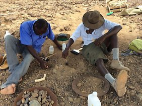 Cyprian Nyete und Isaiah Nengo bei der Ausgrabung von Alesi. Sie benutzen feine Stäbe und Pinsel, um das Fossil zu schützen.