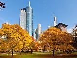 Korrekturen zum Einstieg nutzen: Warum die Herbstrally ausfallen könnte