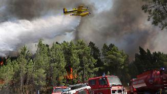 Schwere Waldbrände in Portugal: Löschflugzeuge kämpfen gegen Flammen