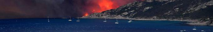 Der Tag: 12:49 Franzose soll 17 Waldbrände gelegt haben