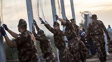"""""""Solidarität in der Praxis"""": EU soll für Ungarns Grenzzaun zahlen"""
