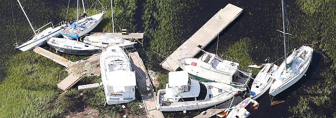 Wirbelsturm Irma wird die Versicherer je bis zu 65 Milliarden Dollar kosten, schätzen US-Katastrophenexperten.