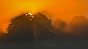 20 Grad im Südwesten: Sonne kämpft sich durch den Nebel