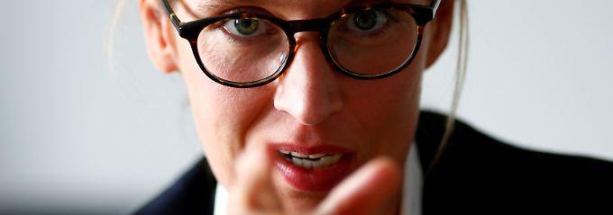 """AfD: Was erwartet den Bundestag?: """"Die Nazi-Keule ist das Dümmste"""""""
