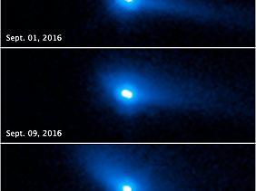 Diese Reihenaufnahmen von Hubble zeigen, dass der Doppelasteroid 288P aus zwei Teilen besteht, die umeinander kreisen und kometenähnliche Merkmale aufweisen. Dazu gehören die Koma - eine dünne Gashülle - und der Staubschweif.