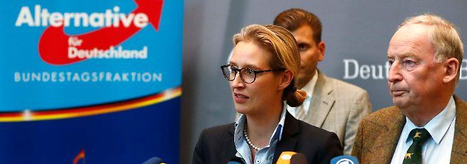 """Spitzenduo führt AfD-Fraktion: Gauland ist """"dankbar"""" für Petrys Austritt"""