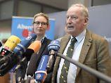 Ex-Chefin mit neuen Plänen: AfD sieht Petry zum Scheitern verurteilt
