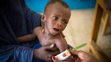 Hungersnot im Bundeswehr-Gebiet: Zahl mangelernährter Kinder in Mali steigt