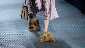 Ein Gucci-Model präsentiert auf der Mailander Fashion Week 2105 Schuhe (?) aus Pelz. Über Geschmack lässt sich bekanntlich streiten. Über tote Tiere nicht.