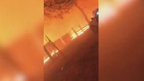 Waldbrände in Kalifornien: Handyaufnahmen zeigen Wucht der Flammen