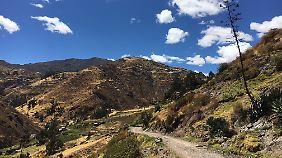 Fast schon blühende Landschaften finden die Reisenden auf dem Weg nach Huancayo.