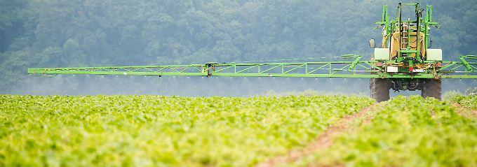 Tod (fast) aller Pflanzen: Was ist Glyphosat genau?