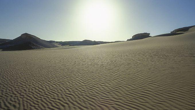 Die Sahara besteht nur zu einem Fünftel aus Sand. Der größte Teil sind Felsen oder Stein. Doch alle 100.000 Jahre wird die Wüste grün.