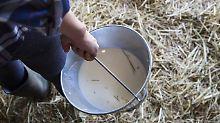 Trinken statt Kratzen: Schützt kaum behandelte Milch vor Allergien?