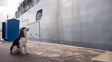 """Pause für die deutsche Fregatte: Willkommen in """"Dschibuti"""""""