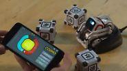"""n-tv Ratgeber: Roboter """"Cozmo"""" verzückt als Haustier der Zukunft"""