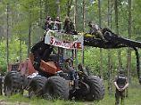 EU-Gericht fordert Abholz-Stopp: Polen drohen Geldstrafen im Urwald-Streit