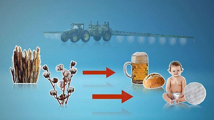 Industrie gegen Umweltschutz: Glyphosat vergiftet nicht nur das Koalitionsklima