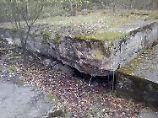 Relikt aus dem Zweiten Weltkrieg: Britin entdeckt geheimen Bunker im Garten