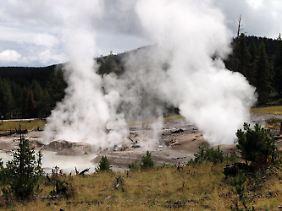 Dampf steigt auf im Yellowstone-Nationalpark.