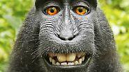 Die Geschichte des Selfies: Klick, klick - ick