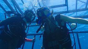 """""""47 Meters Down"""": Aus Urlaubsspaß wird binnen Sekunden ein blutiger Überlebenskampf."""