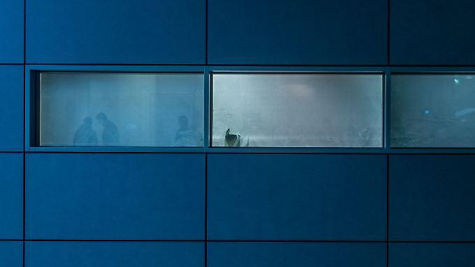 Klare Sicht auf die Große Koalition? Keineswegs - im Dezember besprachen sich Union und SPD hinter zugezogenen Fenstern.