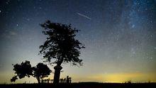 Sonne, Mond und Sterne im August: Perseidenspektakel gut zu sehen
