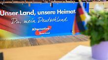 Sachsen und Süden Brandenburgs: AfD will ihre Mehrheiten vergrößern