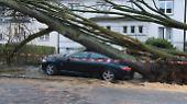 """Tote durch """"Friederike"""": Orkan fegt über Deutschland"""