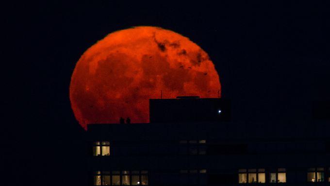 """Supermond über Berlin am am 14.11.2016: In dieser Nacht war der Mond der Erde so nah wie zuletzt 1946. """"Blue"""" und verfinstert war der Mond in dieser Nacht aber nicht."""