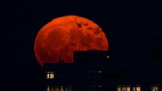 """""""Super-Blau-Blutmond"""": Dreifaches Spektakel erstrahlt am Nachthimmel"""