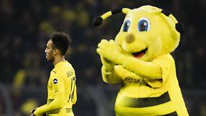 Endlich wieder Ruhe beim BVB?: Aubameyang zu Arsenal - Batshuayi kommt bis Saisonende